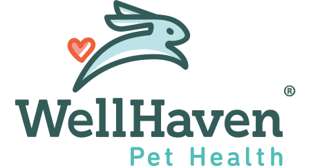 WellHaven Pet Health Denver